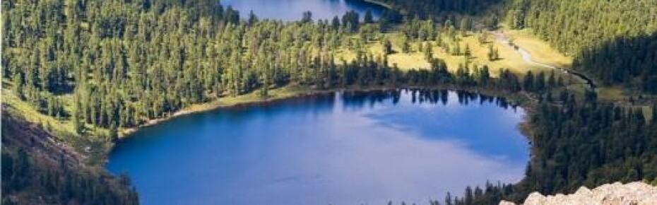 Граждан и юрлиц начнут наказывать за загрязнение водных объектов