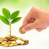 Минприроды ждет заявки от субъектов РФ на использование средств экосбора до 1 апреля