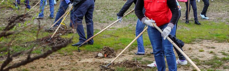 В ходе «Генеральной уборки страны» ликвидировано более 1000 свалок