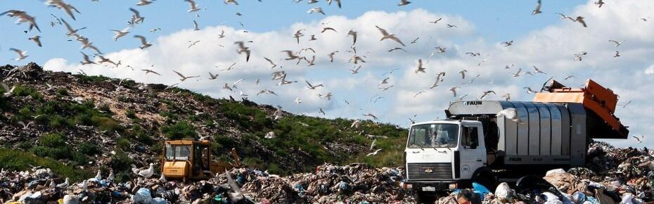 Деньги на свалку: как подорожает вывоз мусора