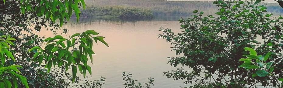 Поздравляем экологов России с профессиональным праздником