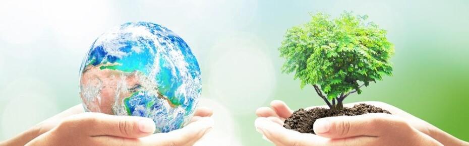 «Зеленая» бумажка: может ли экология быть выгодной